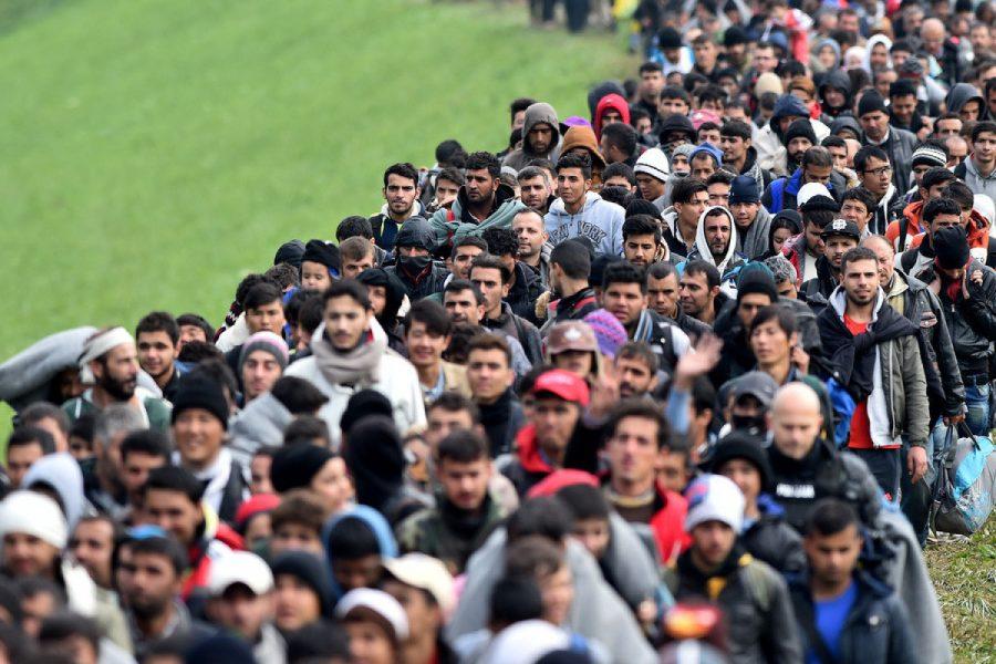 мигранты мусульмане в европе
