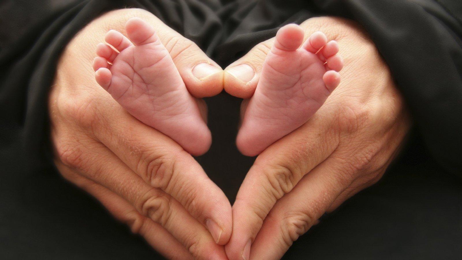 Fotos y videos sobre abortos 43