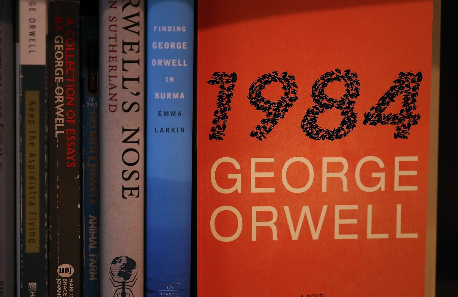 a critique of george orwells 1984