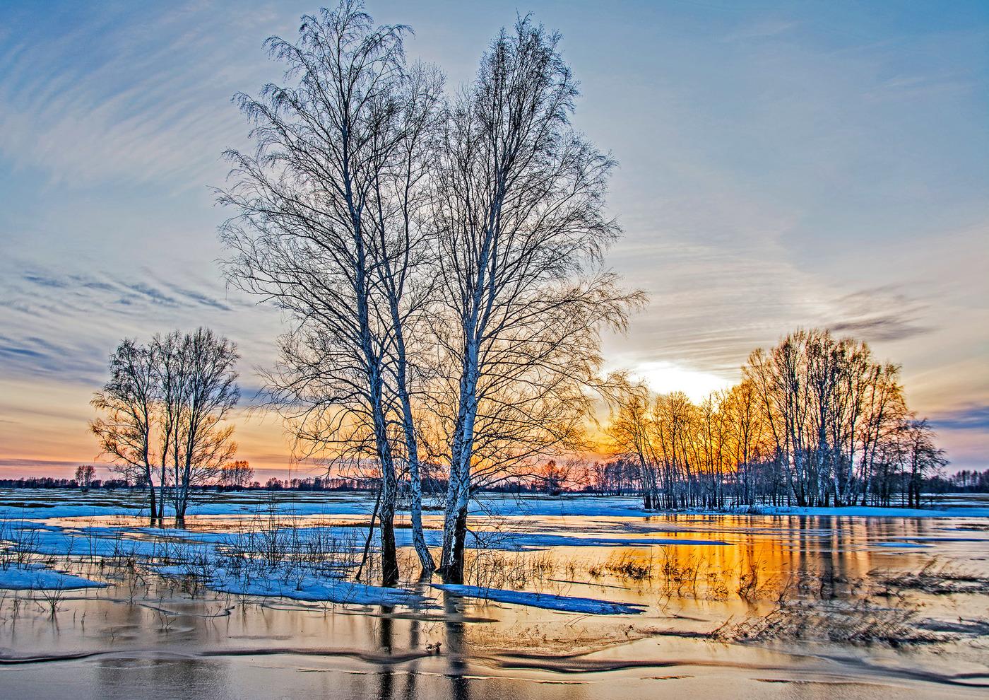 большую натуральную картинки природа начало весны покажут вам порядок